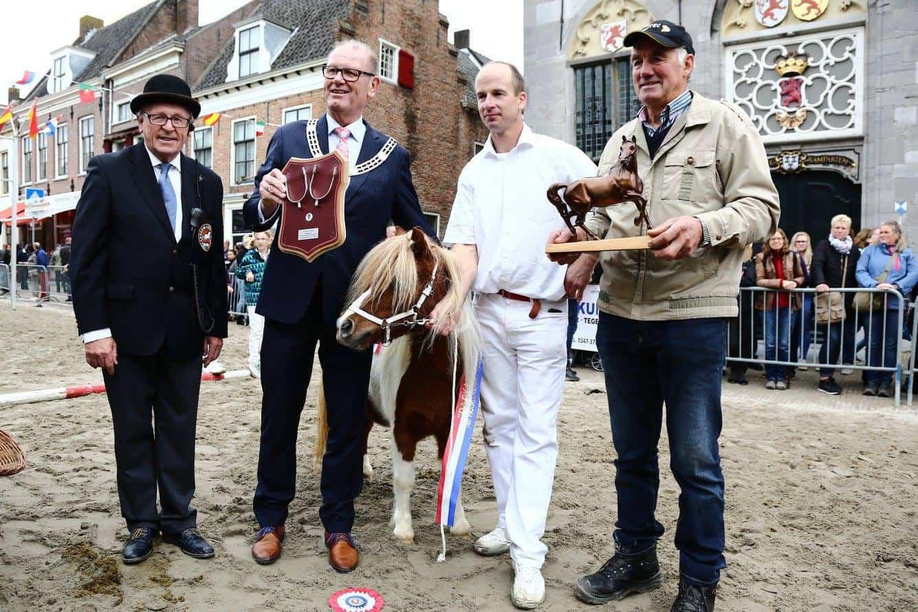 Sluiseiland sponsort Paardenmarkt